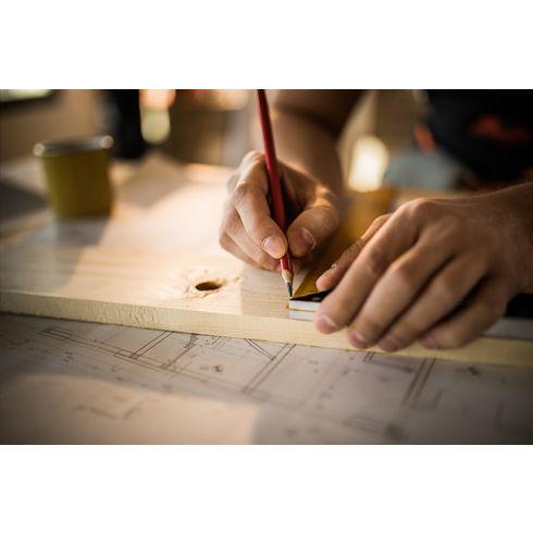 Carpenter timmermanspotlood